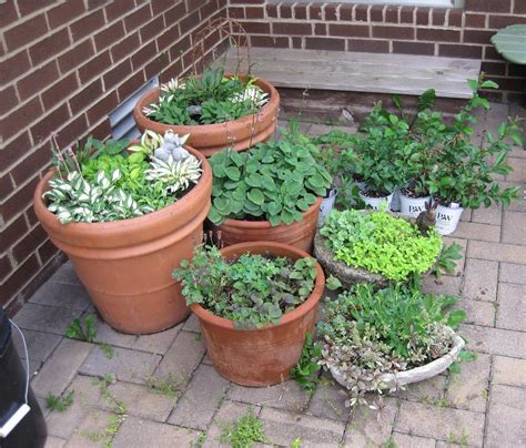 patio gardens ideas 17 best 1000 ideas about apartment patio gardens on pinterest patio 30 inspiring small balcony