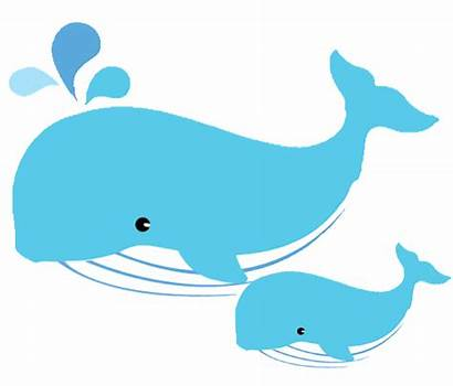 Whale Clipart Dolphins Mom Transparent Dolphin Clip