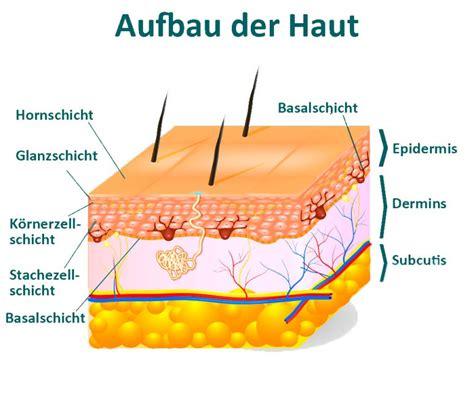 Aufbau Schichten by Faq Tanclub