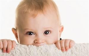 Kinderhochstuhl Baby One : inrichten hersenen baby van 1 jaar oud oei ik groei ~ Markanthonyermac.com Haus und Dekorationen