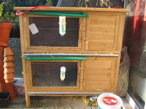 stall für kaninchen kaninchen stall und vergesellschaftung kaninchen