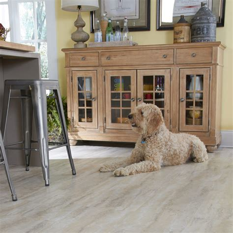 coles flooring santee coles flooring san diego carpets hardwood flooring