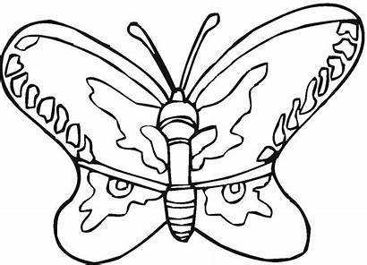 Butterfly Coloring Pages Printable Butterflies Freecoloringpagefun Painting