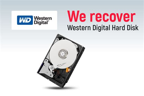 Western Digital Data Recovery Service Singapore  Wd Hard. Tomtom Fleet Management San Marcos Bail Bonds. Medical Record Storage Companies. Vendor Management Systems The Cleaning Center. External Hard Drive Recovery Dr French Dds. What Can You Do With A Bachelors In Business Administration. North Carolina Physical Therapy Schools. Hard Drive Recovery Chicago Goodwin Law Firm. University Of Kentucky Online