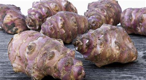 cuisiner les topinambour comment cuisiner les épinards frais astuces de cuisine