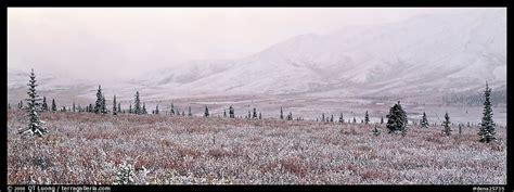 panoramic picturephoto misty mountain scenery  fresh