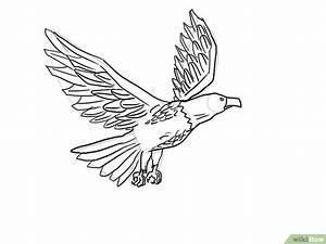 Terlengkap   Gambar Sketsa Burung Terbang