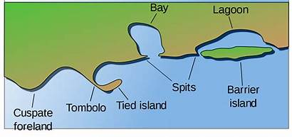 Coast Landform Svg Coastal Landforms Accreting Image6