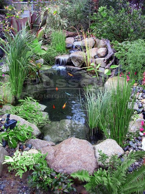 Pictures Of Backyard Ponds by 25 Best Ideas About Small Ponds On Garden