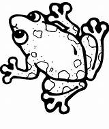 Frog Coloring Tree Theme Clipartmag sketch template