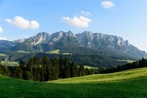 panorama   green valley   backdrop
