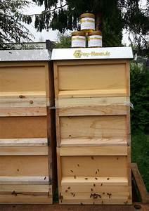 Honig Aus Fichtenspitzen : honig aus hagen berchum und umgebung kaufen ~ Lizthompson.info Haus und Dekorationen