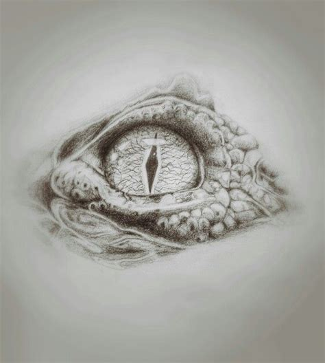 crocodile eye  drawings crocodile tattoo crocodile