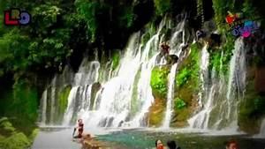 La Ruta De Las Flores-el Salvador 2012-los Reportajes De Osiel Hd