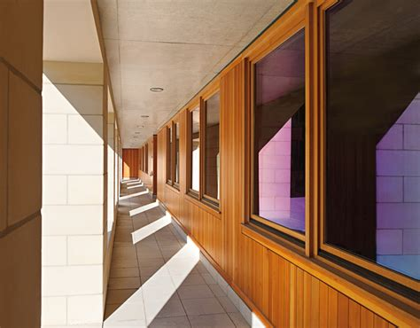 jeld wen  marvin windows  comparison  options