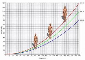 Body Mass Index Berechnen Frau : bmi calculator what is my bmi our calculator with 3d body view bmi 3d ~ Themetempest.com Abrechnung