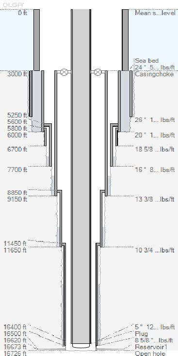 typical  schematic   deepwater gom