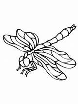 Coloring Pages Dragonfly Drawing Dragonflies Clipart Insect Nature Printable Wings Leaf Bees Supercoloring Fauna Flight Crafts Select Category Colouring Dragon sketch template