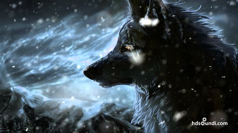 Real Pic Paket Florin most epic quot the wolf and the moon quot by