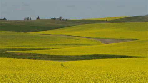 North Dakota Landscapes (Minot, USA) - Travellerspoint ...