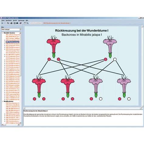 Modification Utation by Mendelsche Gesetze Modifikation Und Mutation 1004290