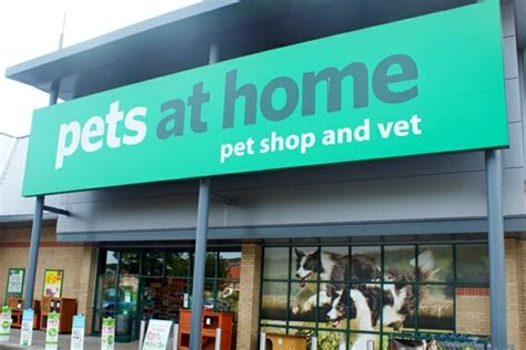 At Home Store : Pets At Home Trot Out Improved Set Of First Quarter
