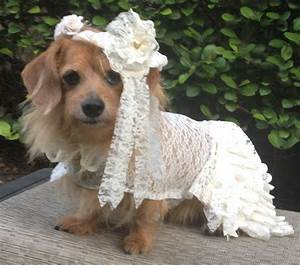 dog wedding dress with veil by fiercepetfashion With dog wedding dresses