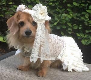Dog wedding dress with veil by fiercepetfashion for Dog wedding dresses
