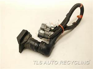 2003 Toyota Sequoia Body Wire Harness - 82169-0c010