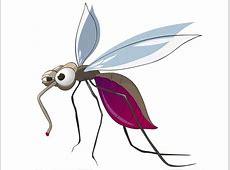 Die Tücken mit den Mücken kinderde
