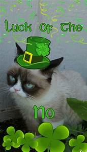 Happy St Patrick's Day | Church of Grumpy Cat | Pinterest