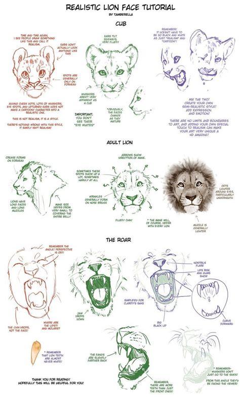 animaux tattoo animal drawings drawings art drawings