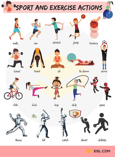 sport  exercise actions vocabulary  english