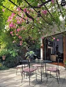 Kletterpflanzen Für Pergola : terrasse pergola begr nen kletterpflanzen eisen m bel ideen f r den garten pinterest ~ Markanthonyermac.com Haus und Dekorationen