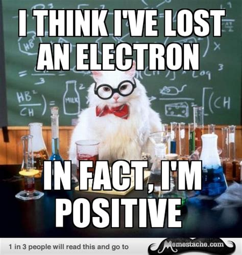 Chemistry Cat Meme Chemistry Pob Home