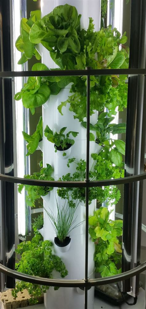 vertical hydroponic gardening systems home outdoor