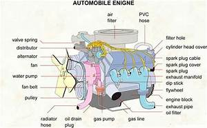Anatomy Of A Car Engine