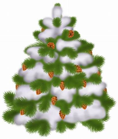 Transparent Tree Christmas Clipart Cones Winter Yopriceville