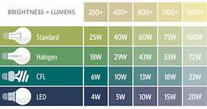 The Light Bulb Buyer U0026 39 S Guide
