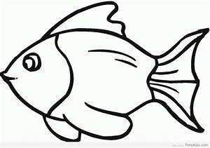 Marlin Fish Silhouette Drawings Sketch Coloring Page