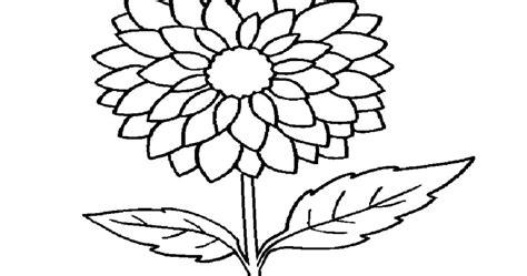 26 gambar bunga di kendi istimewa