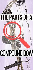 What Is Compound Bow Archery In 2020