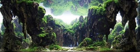 Aquascape Rocks by Ohko Aquascaping Rock