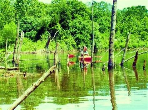 Pa Kayak Boat Launch Permit by Kayak Canoe The Giving Pond Lehigh Valley With
