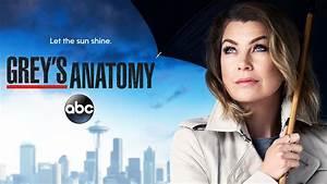 When Does Grey's Anatomy Season 14 Start? Premiere Date ...