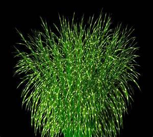 Miscanthus Sinensis Strictus : onyxgrass library miscanthus sinensis strictus ~ Michelbontemps.com Haus und Dekorationen