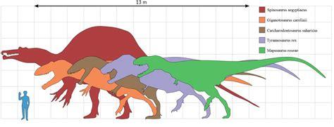 dinosaur sizes