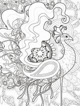 Peacock Coloring Adult Bird Printable Colouring Adults Animals Animal Crazy Drawing sketch template