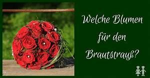 Blumen Bedeutung Hochzeit : die bedeutung der blumen im brautstrau png ~ Articles-book.com Haus und Dekorationen