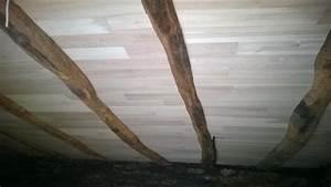 Isoler Plafond Sous Sol : travaux d 39 isolation de solivage ~ Nature-et-papiers.com Idées de Décoration